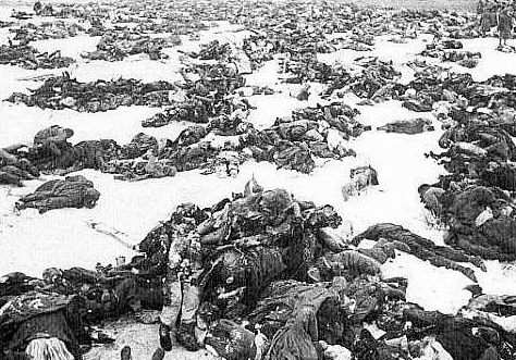 battle-stalingrad-german-soldiers-killed-002